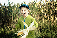 Germany, Saxony, Boy holding corn cob and laughing - MJF000311