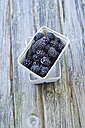 Brambles in box, close up - ODF000304