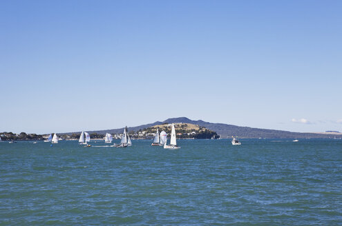 New Zealand, Auckland, View of Rangitoto Island - GW002377