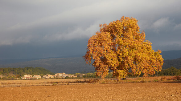 France, Autumn in Rustrel - DHL000034