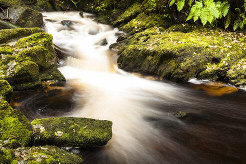 Ireland, Killarney National Park, Torc waterfall - SR000333