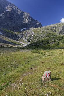 Austria, Carinthia, Upper Tauern, low-moor bog at Gradenmoos, blaze - GFF000248