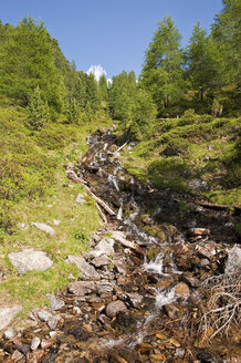 Italy, South Tyrol, Puster Valley, Antholz-Obertal, Staller Saddle, mountain stream - UM000634