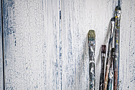 Old brushes leaning on wooden boards - SBDF000183