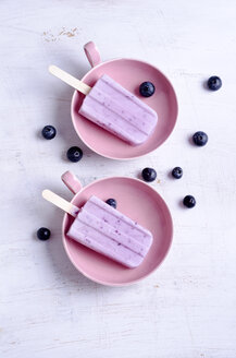 Homemade blueberry ice lollies - ODF000423