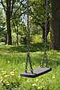 Swing and meadow - AXF000477
