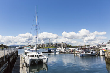 Canada, British Columbia, Victoria, Marina with seaplane - FO005328