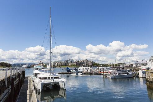 Canada, British Columbia, Victoria, Marina with seaplane - FO005328