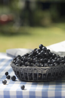 Blueberries on garden table - ASF005160