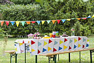 Table in garden on a birthday party - NHF001428