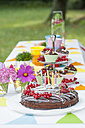 Table in garden on a birthday party - NHF001429