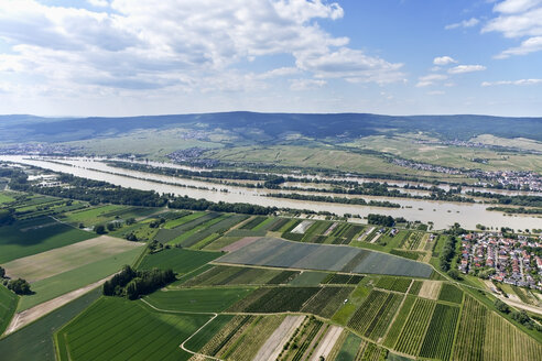 Germany, Rhineland-Palatinate, High water of River Rhine at Heidenfahrt, aerial photo - CSF019972