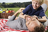 Germany, Cologne, Father and son playing around on picnic blanket - PDF000398