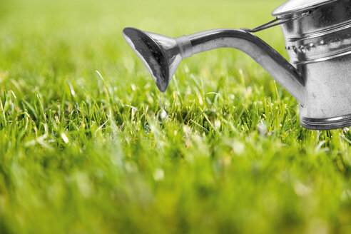 Lawn with watering can, Composing - CSF020029
