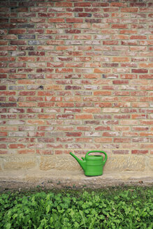 Germany, Coburg, garden, green watering can - VTF000043