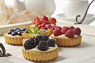 Pies with vanilla pudding and different fruits, studio shot - CSF020135
