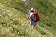 Austria, Carinthia, Carnic Alps, female hiker - SIEF004491