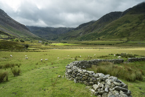 Great Britain, Wales, Gwynedd, Ogwen Valley, Snowdonia National Park - ELF000514