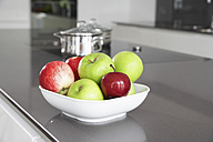 Germany, Cologne, Bowl with apples in kitchen - PDF000565