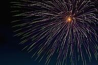 Fireworks exploding in the sky at night - KJF000273