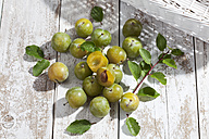 Sliced and whole greengages (Prunus domestica subsp. italica var. claudiana) on white wooden table, studio shot - CSF020242