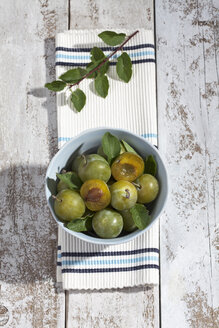Sliced and whole greengages (Prunus domestica subsp. italica var. claudiana) in a bowl on white wooden table, studio shot - CSF020245