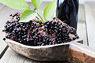 Elderberries (Sambucus), leaves on a wooden shovel and a bottle of elderberry juice on white wooden table, studio shot - CSF020261