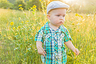 USA, Texas, Baby boy standing in field - ABAF001019