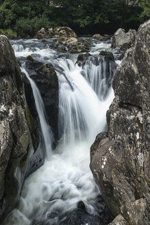 Great Britian, Wales, Betws-y-Coed, Conwy river Snowdonia National Park - ELF000574