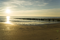 Holland, North Sea, coast, beach in the evening - MYF000047
