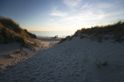 Holland, North Sea, coast, dunes at sunset - MYF000050