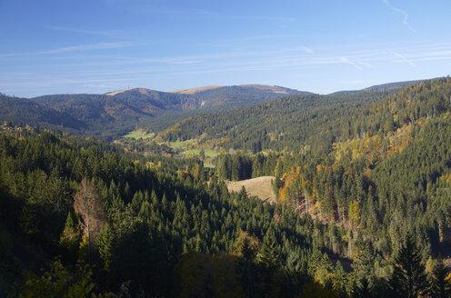 Germany, Baden-Wuerttemberg, Black Forest, View on Feldberg Massif - DHL000123