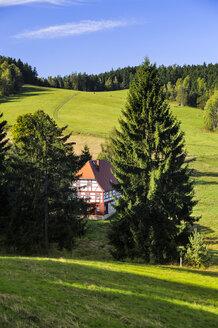 Germany, Saxony, Saxon Switzerland-East Ore Mountains, Raeumicht, Upper Lusatian house - BTF000211