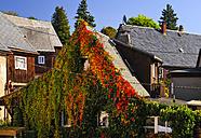 Germany, Saxony, Hinterhermsdorf, Overgrown house - BT000208