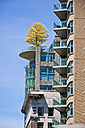 Canada, British Columbia, Vancouver, High-rise residential building with tree on roof terrace - UM000663