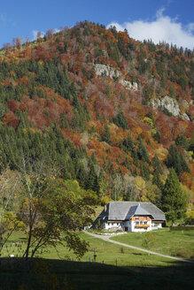 Germany, Baden-Wuerttemberg, St Wilhelmer Valley near Freiburg - DHL000164