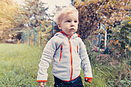 Germany, Bonn, Baby boy exploring garden - MFF000607