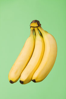 Bunch of bananas, studio shot - WSF000042