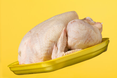 Chicken on yellow plastic plate - WSF000013