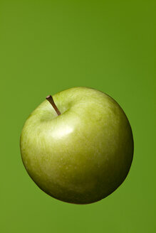 Green apple (Malus), studio shot - WSF000027