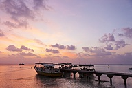 Maldives, Moored boats at jetty - AM001175