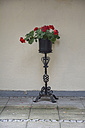 Wrought-iron jardiniere with red geranium - AX000512