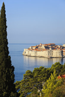 Croatia, Dubrovnik, View of old town - MSF003020