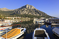 Croatia, Gradac, Fishing boats in harbour - MS003085