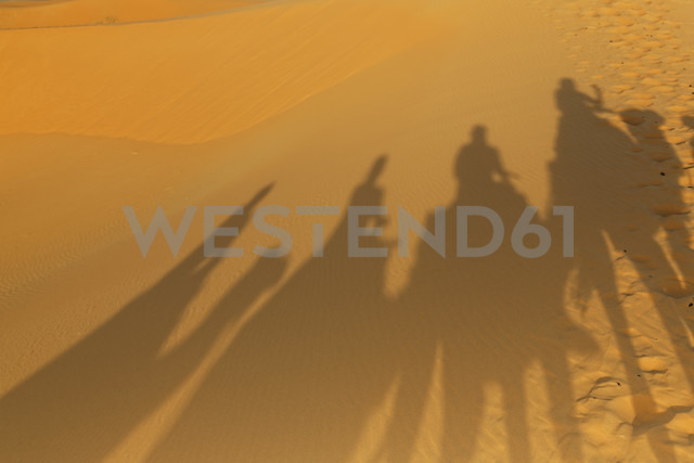 Africa, Morocco, Erfoud, Shadows of a caravan with camels and tourists on sand - GF000309 - Günter Flegar/Westend61