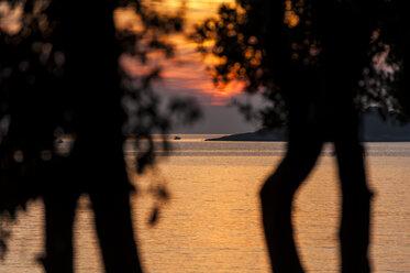 Croatia, Vrsar, Sunset over sea with trees and boat - KJ000264
