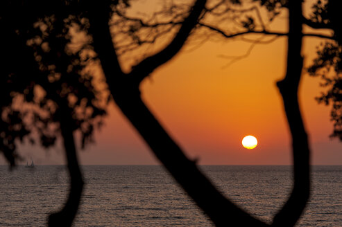 Croatia, Vrsar, Sunset over sea with trees and boat - KJF000257