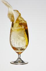 Beer in beer glass - AKF000262