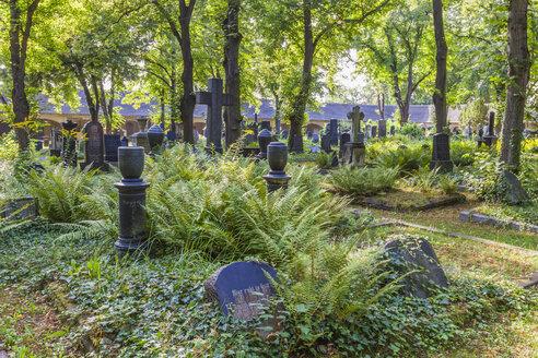 Germany, Saxony-Anhalt, Halle, Cemetery Stadtgottesacker - WD002020