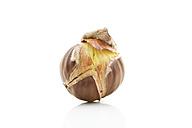 Spanish chestnut (Castanea sativa) on white underground - MAEF007502